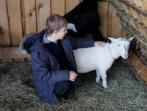 Tierpädagogik   09