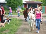 Tiersegnungsgottesdienst  auf dem Storchenhof 13